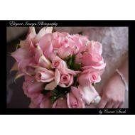 Tmx 1222912902788 Tn Bryan And Cori 1 Marysville wedding florist