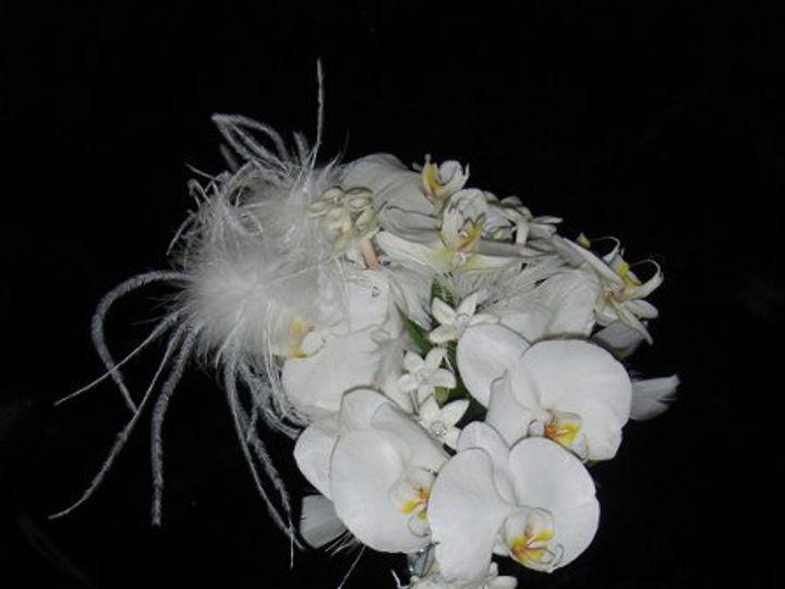 Tmx 1223515017579 Stephanie%27sWedding023 Marysville wedding florist
