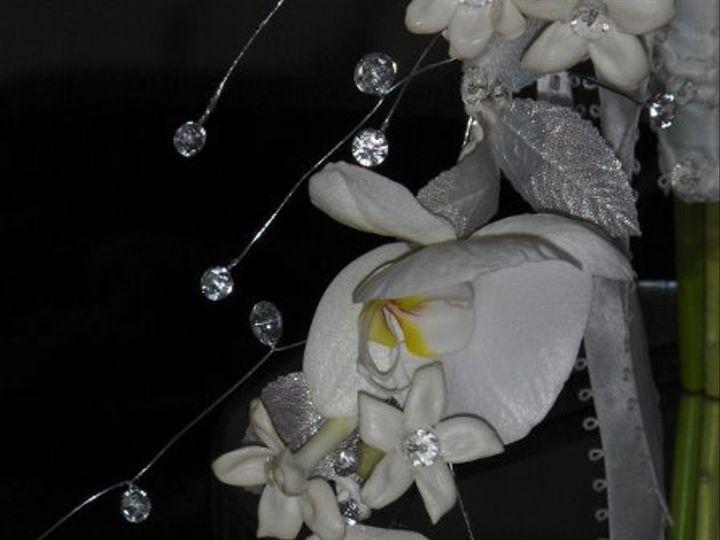 Tmx 1223515083594 Stephanie%27sWedding021 Marysville wedding florist