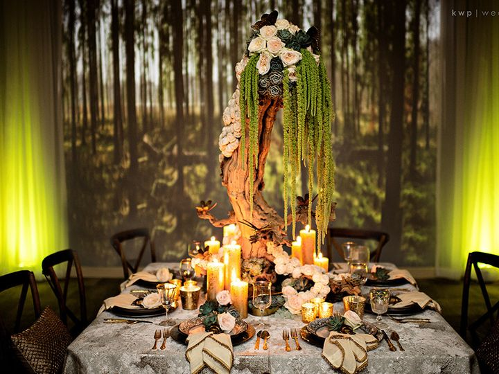 Tmx 1395437763572 Kwpmidsummer01 Jacksonville, FL wedding dj