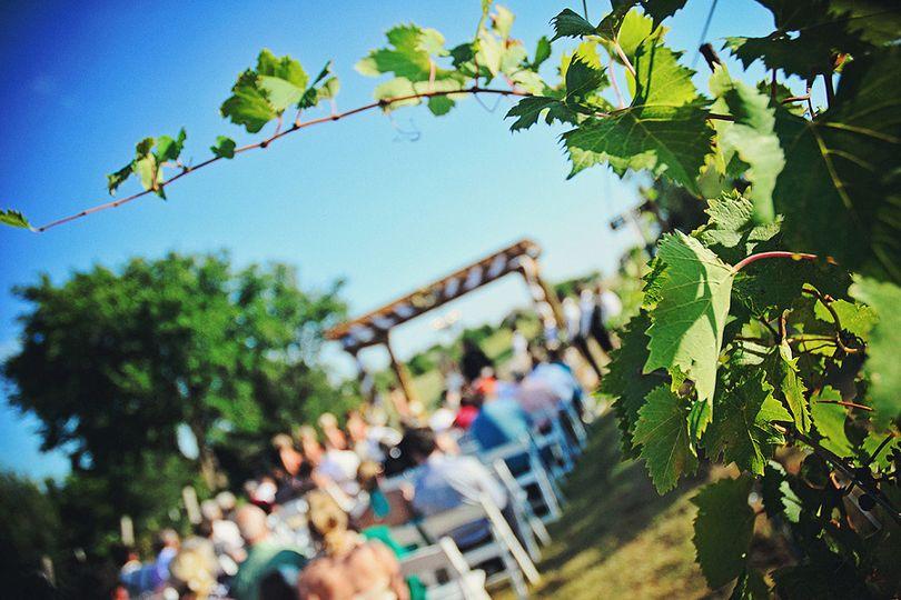 cross chapman wedding 1075