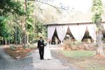 The Butterfly Pavilion image