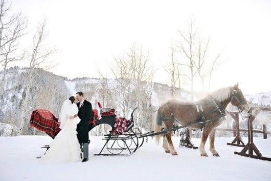sleighwedding1