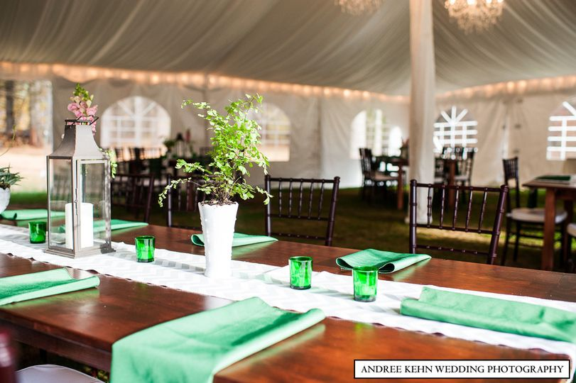 Table setup with plant decors