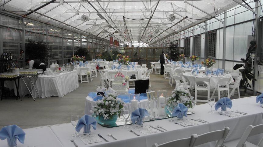 This reception was suppose to be in a backyard, but had to be moved to this facility because the...