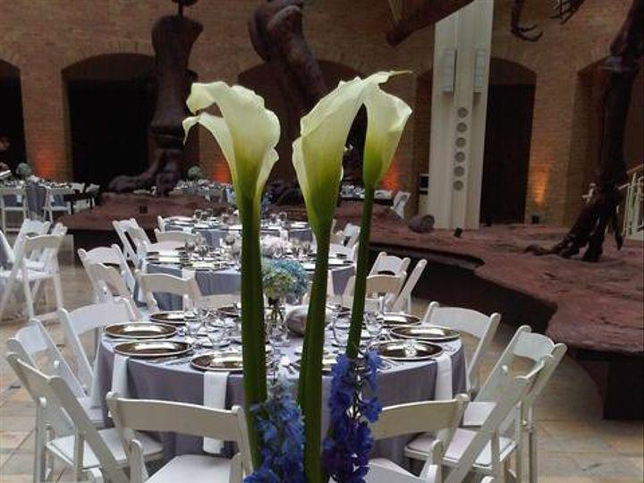 Tmx 1415305092251 11930878083c6f8a0dd77z Bayonne wedding planner