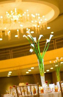 Tmx 1415305099172 119314485363de3418e72n Bayonne wedding planner