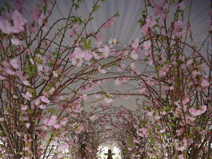 Tmx 1374507589275 Imely Photo 00685 Oldsmar, FL wedding florist