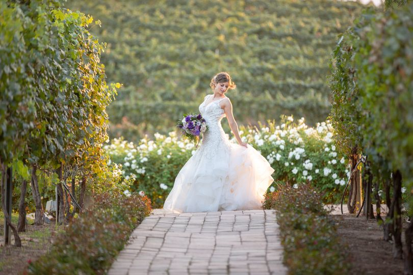 Vineyard Walkway