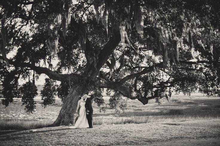Tree photoshoot