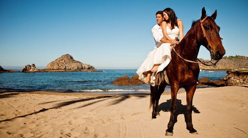elena aj horse