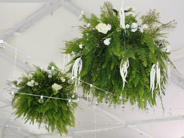 Tmx Ohara Ceiling Ferns 2 Ww 51 1862309 1565290201 Pittsford, NY wedding florist