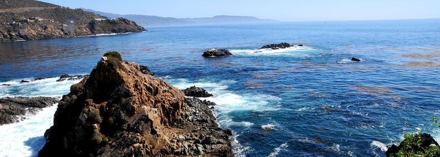 Explore the waters of baja california on one of our southern Cali cruises. Many packages available...