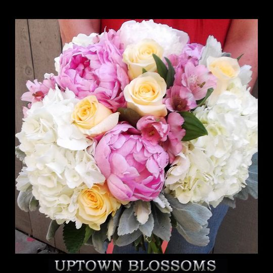 Lush soft colors of Peonies, Hydrangea, Roses and Alstroemeria with soft Dusty Miller foliage.