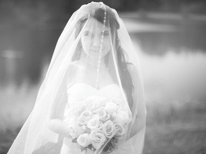 Tmx Bluebox Digital Wedding Videography Photography 13 51 1976309 159379954738023 Lutz, FL wedding videography
