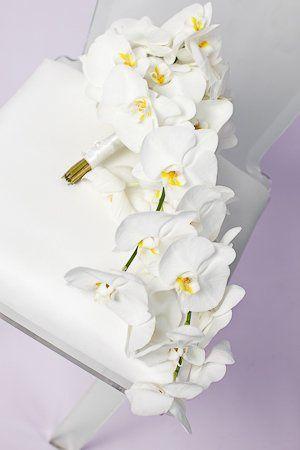 Tmx 1338996880473 Sw005 Londonderry, New Hampshire wedding florist