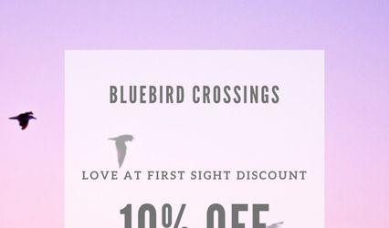 Bluebird Crossings 2