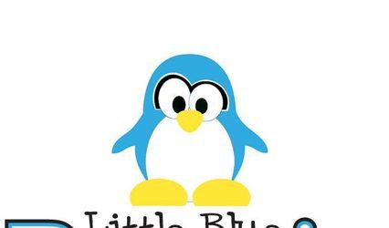 Little Blue Penguin Designs
