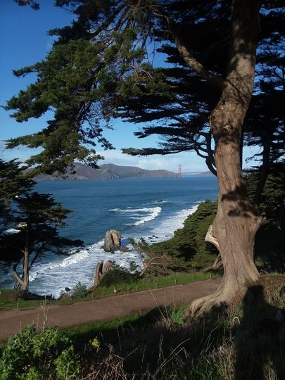 The beauty of Humboldt County takes your breath away.