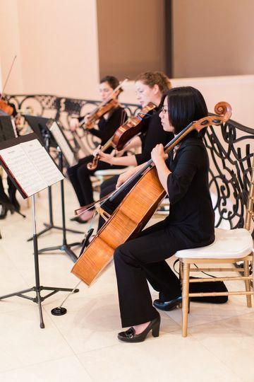 Elegant Professional Strings