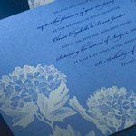 Tmx 1288205655445 BlueHydrangea Clifton wedding invitation