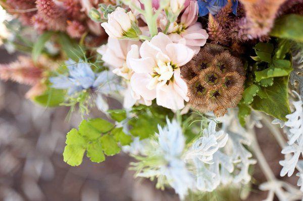 Tmx 1266621873942 HollyFleur163 Reno wedding florist