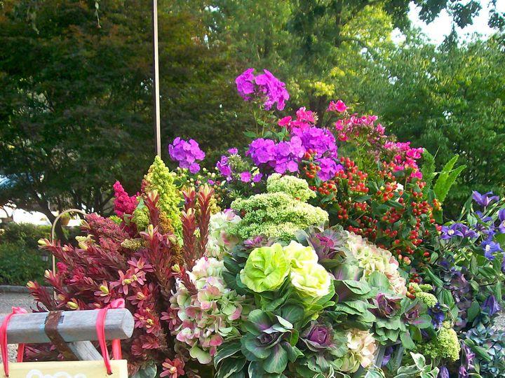 Tmx 1365016909849 Just Married North Salem wedding florist