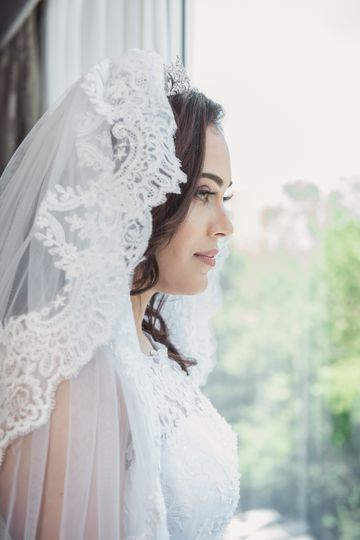 Veil and gown