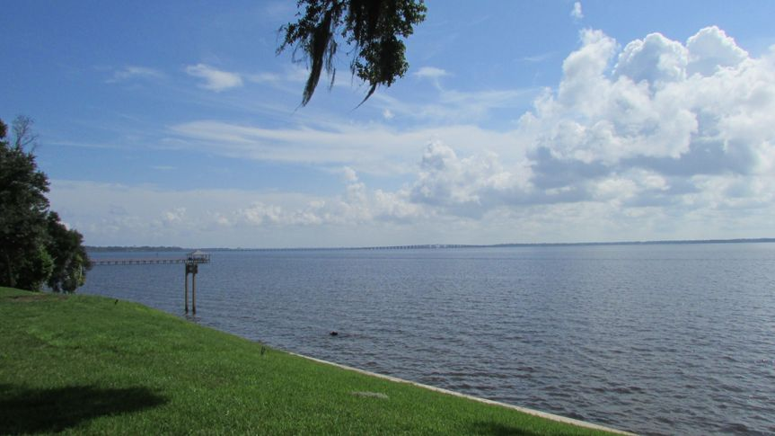 St Johns River View