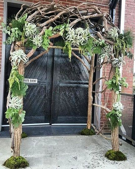 Airplant arch