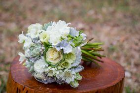 Teacup Floral