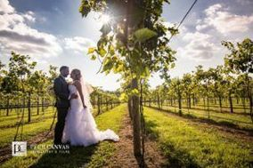 DC Estate Winery