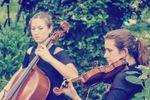 Sister Strings image
