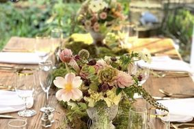 Virginia Floral Design & Events