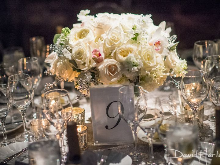 Tmx 1485372756504 Dh19609 Owings Mills, Maryland wedding florist