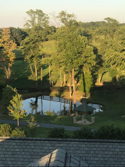 Pond From Top of Manor