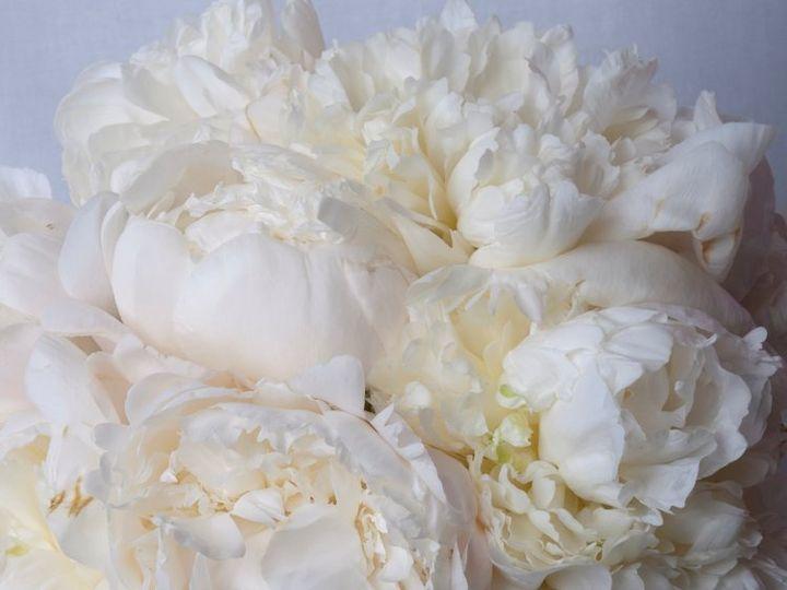 Tmx 1355262152847 Weedweavers425 Wakefield, Rhode Island wedding florist