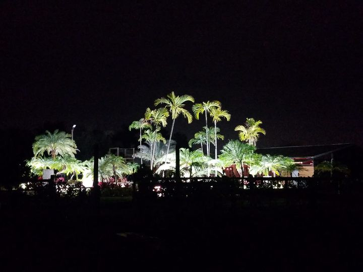 Night view of Landscape lights