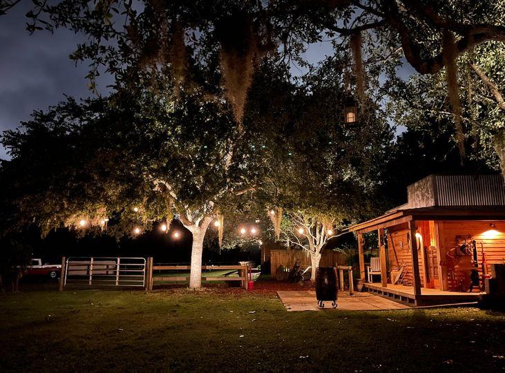 Enchanting Oak Tree & Saloon