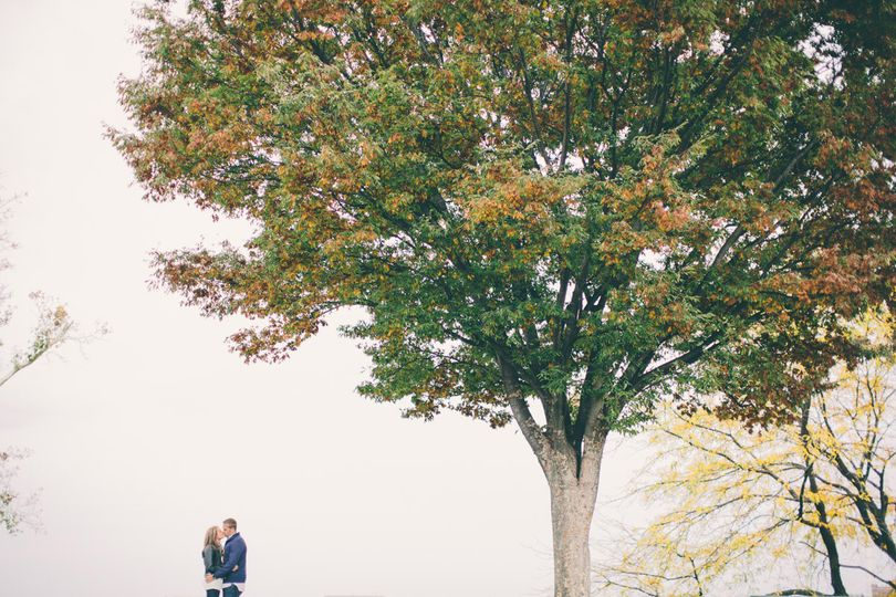 baltimore wedding photo tree engagement artistic r
