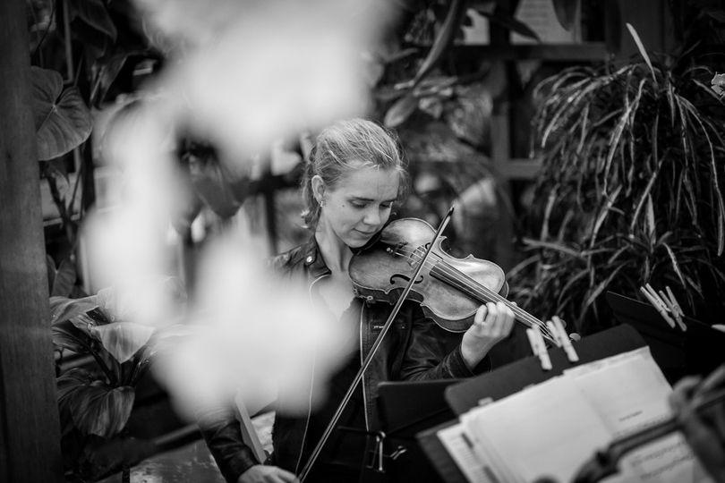 Outdoor violin performance
