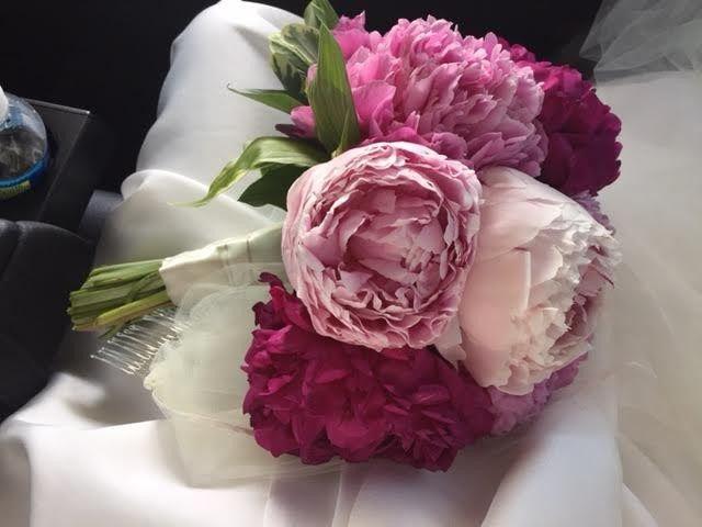 Tmx 1473358918152 Mollies Wedding Williamsburg, Virginia wedding florist