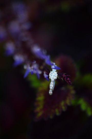 Artistic ring closeup