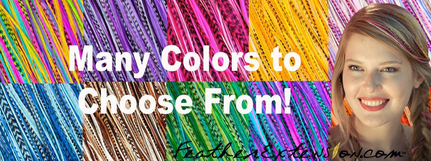 colorstochoosefrom