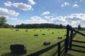 Southern C's Farm