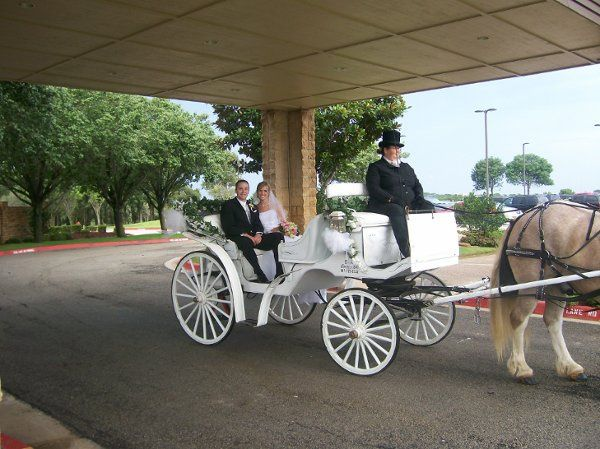Horse and Carriage Arrival