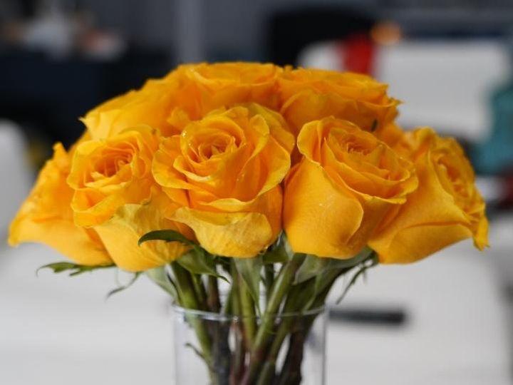 Tmx Dsc03937 51 1952119 158344602681175 Greenbelt, MD wedding florist