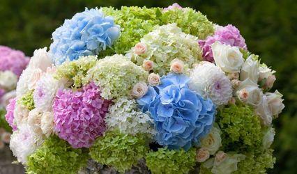 Stella's Flowers 1