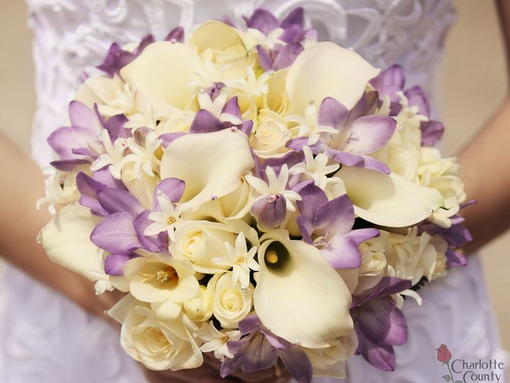 Tmx Calla Purple 51 358119 157902352840797 Punta Gorda, FL wedding florist