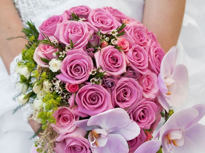 Tmx Pinks2 51 358119 157902353355496 Punta Gorda, FL wedding florist